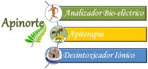 terapia apiterapia en iquique curar y prevenir enfermedades