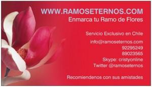 enmarcado de ramos de novia, www.ramoseternos.com concepcion