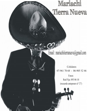 serenatas con mariachis :(2)8930610