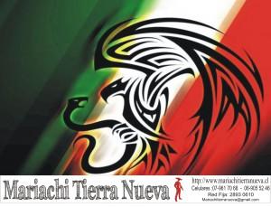 mariachis.28930610
