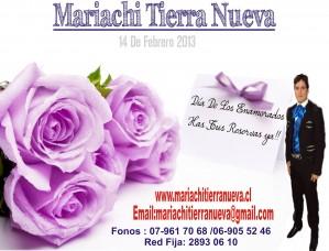 mariachis y serenatas dia de los enamorados.red fija:28930610