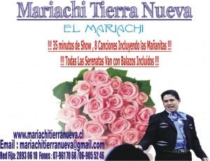 mariachis en tu domicilio con balazos.red fija:28930610