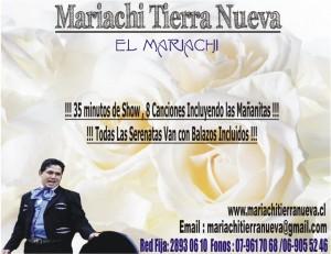 serenatas mariachi con ofertas insuperables .red fija:28930610
