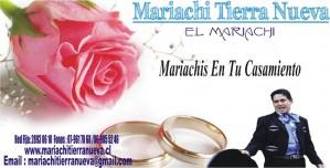 serenatas con mariachis para casamientos.red fija:28930610