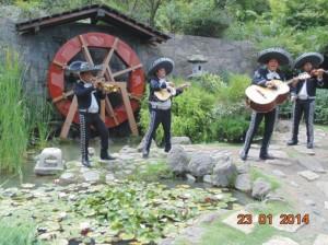 somos un grupo de musicos traidos de diferentes paises de latinoameric