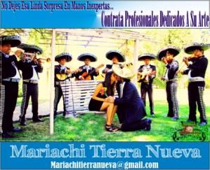 musica mexicana en tus santorales: (022) 3016370
