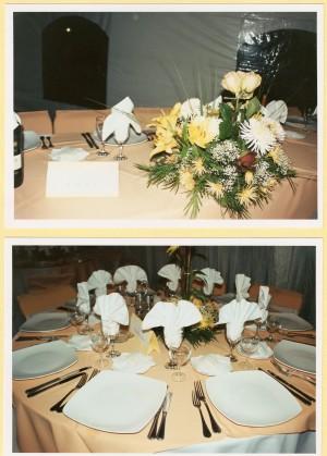 cenas de gala aÑo 2009
