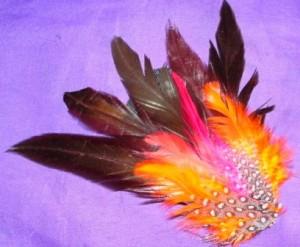 accesorios de moda y diseños exclusivos en plumas, aros , collares