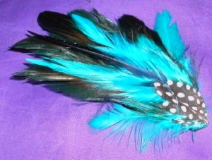 accesorios con plumas