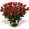 Flores a Domicilio: www.rosalinda.cl